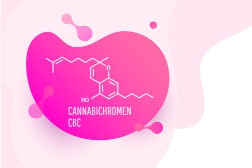 According to Science, the Cannabinoid CBC (Cannabichromene) Has Significant Antibacterial Properties