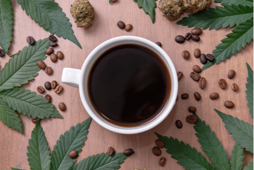 What Happens When You Mix Cannabis & Caffeine?