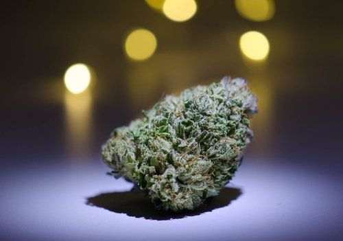 Feeling Stressed? These Strains Are Known for Their Relaxing Effects