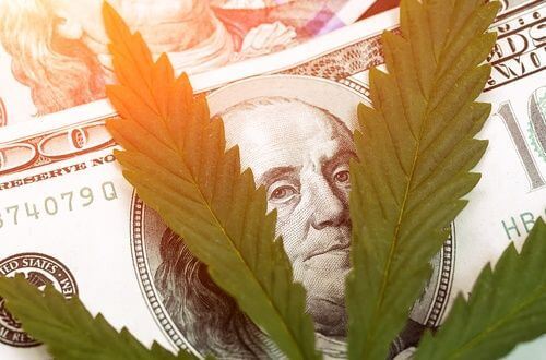 How to Afford Florida Medical Marijuana on a Fixed Income