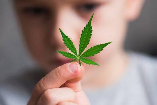 Is MMJ Safe for Children to Use?