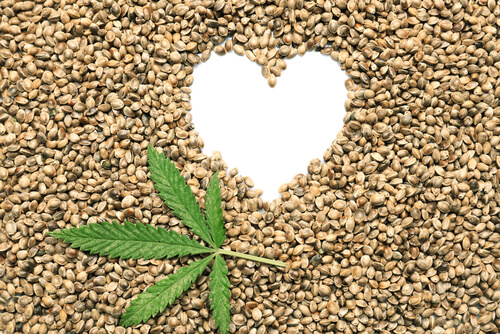 THC & CBD's Role in Heart Health